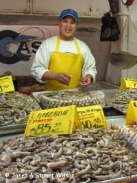 Fish Market in Ensenada, Mexico